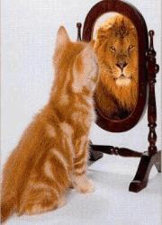 Wierzysz w siebie?
