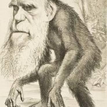 Darwin się pomylił!