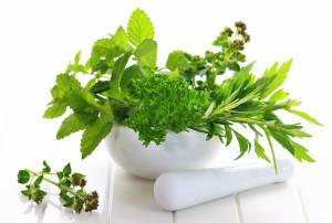 Fresh-herbs