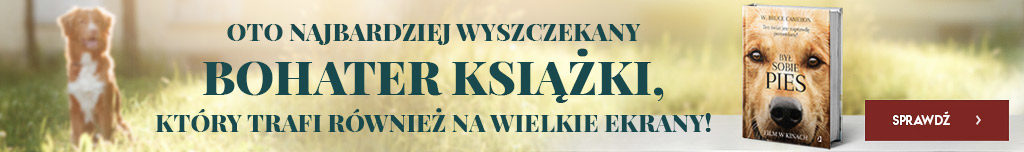 BSP_WK_1666x247px