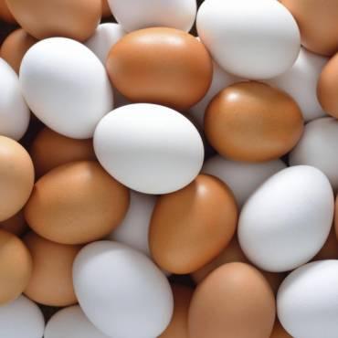 Które jajka są najzdrowsze?