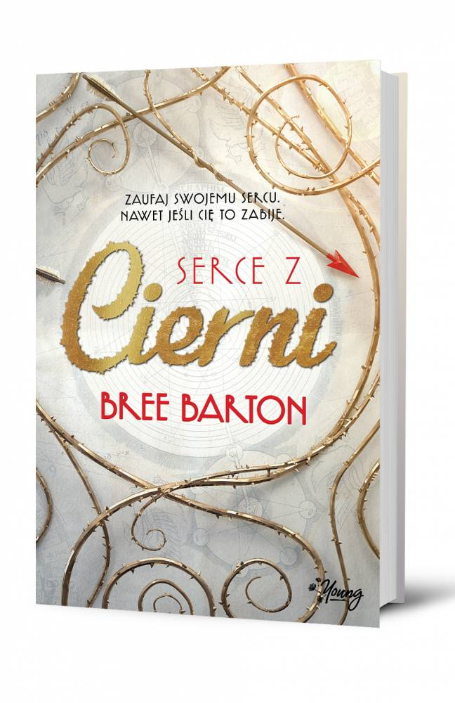 SERCE_Z_CIERNI_FRONT_3D