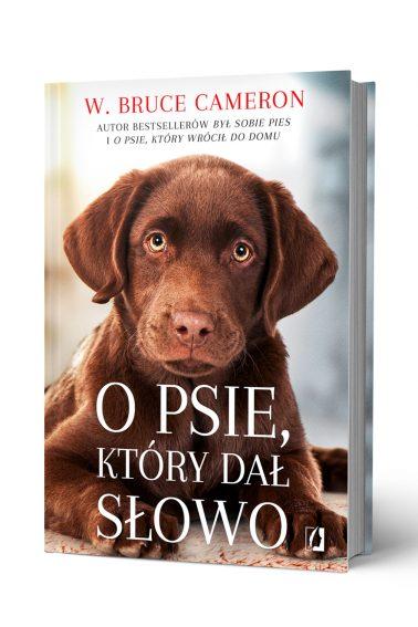 O_psie_slowo_front_3D