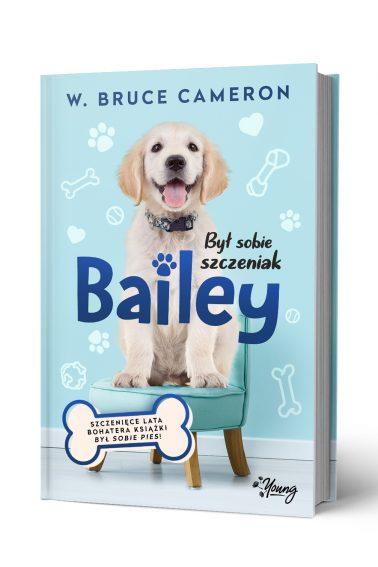 BSS_Bailey_front_3D