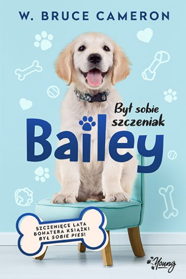 BSS_Bailey_front_72dpi