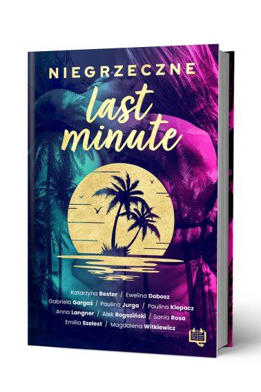 Niegrzeczne_last_minute_front_3D
