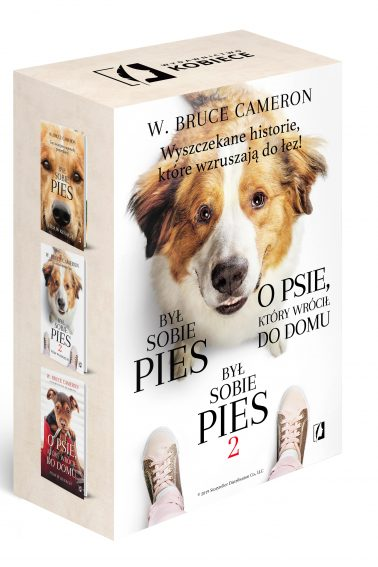 pies_pakiet_wizual_front2(2) — kopia-min