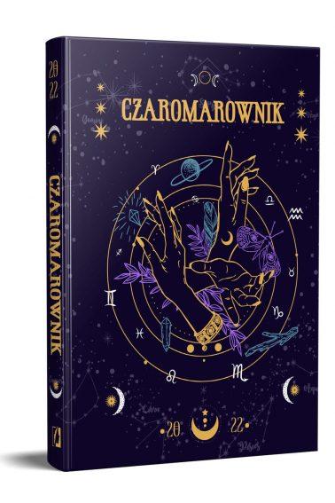WK_Czaromarownik_3D_v01_Easy-Resize.com