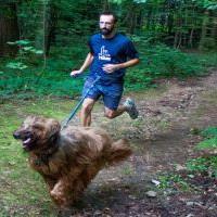 pies pomaga w odchudzaniu